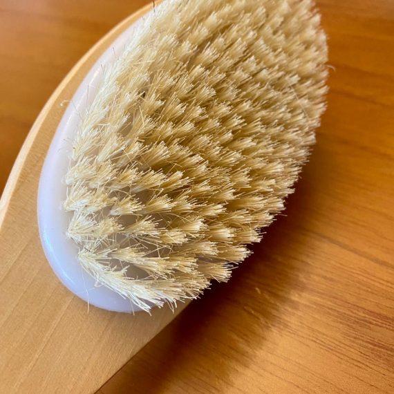 Cepillo piel 3