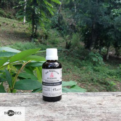 Extracto-de-tonka-50-ml